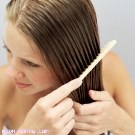 Consejos para el pelo graso