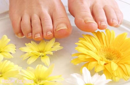 Consejos para tener pies sanos